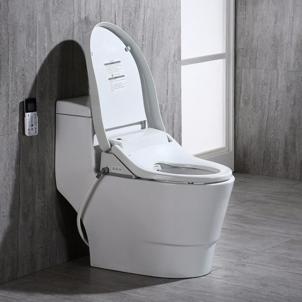 Woodbridge T 0008 Luxury Bidet Toilet Elongated One Piece Toilet With Advanced Bidet Seat Smart Toilet Seat With Temperature Controlled Wash Functions And Air Dryer Woodbridge