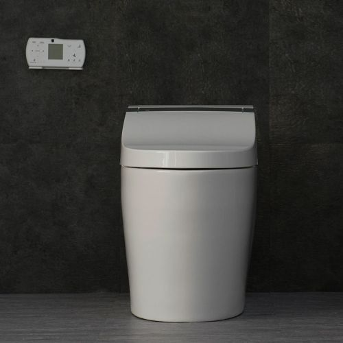 WOODBRIDGE B0950S Compact One-Piece Dual Flush Toilet with Integrated Bidet, Integrated Bidet and Toilet