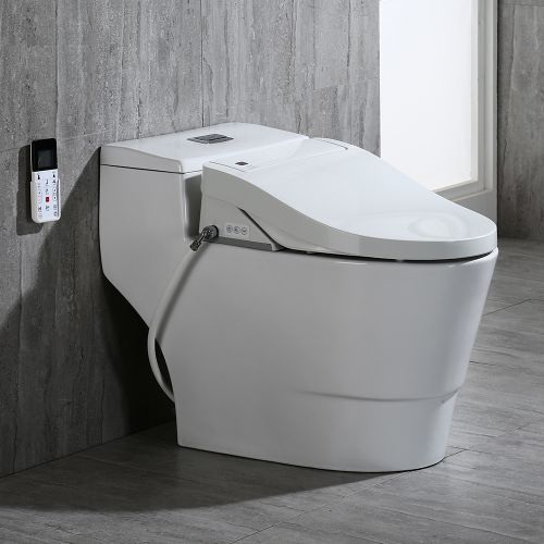 WOODBRIDGE Toilet & Bidet Luxury Elongated One Piece Advanced Smart Seat with Temperature Controlled Wash Functions and Air Dryer, Toilet with Bidet. B0737, Bidet & Toilet